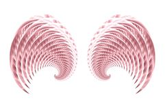 Angel Fairy or Bird Wings 3. An abstract image of angel, cherub or fairy wings in pink on a white background Royalty Free Stock Photography