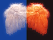 Angel and fallen evil wing. Good and evil angels feather wing concept Royalty Free Stock Photos