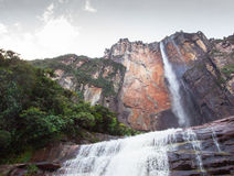 Angel Falls, Венесуэла стоковые фотографии rf