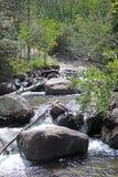 Angel Falls - национальный парк скалистой горы Стоковые Фото
