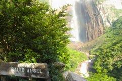 Angel Falls Стоковое фото RF