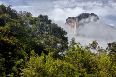 Angel Falls Royalty Free Stock Photos