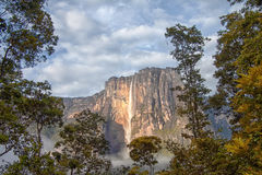 Angel Falls in the morning light - the highest waterfall in the world Stock Image