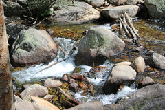 Angel Falls - Rocky Mountain National Park Royaltyfria Foton
