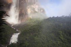 Angel Falls in Venezuela. Waterfall pouring down a cliff, Angel Falls, Venezuela royalty free stock photos