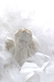 Angel in feathers. White angel in soft feathers Stock Photography