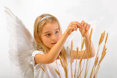 Angel of Fertility Royalty Free Stock Images