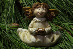 Angel in Fir Green Stock Images