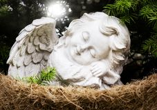 Angel before fir in the light, grave angel. Remembrance day Stock Photography