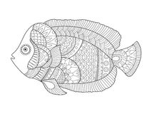 Angel fish coloring book vector illustration. Black and white lines. Lace pattern Royalty Free Stock Photo