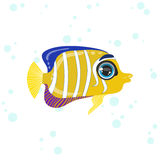 Angel Fish Drawing Images stock