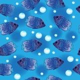 Angel Fish seamless pattern, underwater background, sea wallpaper. Vector illustration Royalty Free Stock Image