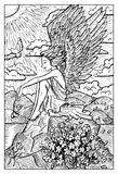 Angel with flower. Engraved fantasy illustration. Fantasy magic creatures collection. Hand drawn vector illustration. Engraved line art drawing, graphic Royalty Free Stock Photos