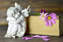 Angel and flowers on old book. Angel figurine and flowers on old book Stock Photo