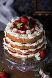 Angel food cake with fresh berries Stock Photos