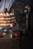 Angel food cake with fresh berries Royalty Free Stock Photo