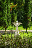 Angel in the garden Royalty Free Stock Photos
