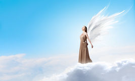 Angel girl flying high. Attractive woman with angel wings on sky background royalty free stock images