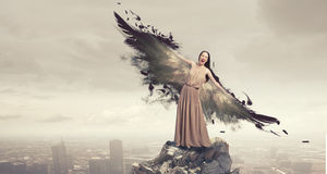 Angel girl flying high. Attractive woman with angel wings on sky background royalty free stock photos