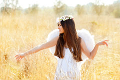 Angel girl in golden field with white wings Royalty Free Stock Photos