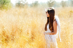 Angel girl in golden field with white wings Stock Photos
