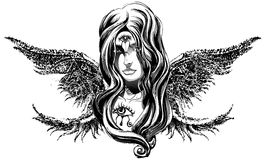 An angel girl. Angel girl with long wings Royalty Free Stock Photography