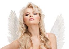 Angel girl in underwear and wings Stock Image