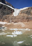 Angel Glacier and Cavell Pond Royalty Free Stock Image