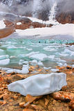 Angel Glacier Jasper National Park Stock Afbeeldingen
