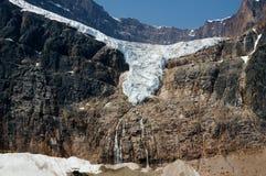 Angel Glacier in Jasper National Park Royalty Free Stock Images