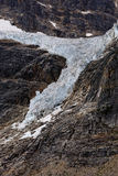 Angel Glacier Mount Edith Cavell Arkivfoton