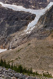 Angel Glacier Mount Edith Cavell Stock Foto's