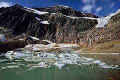 Angel Glacier Mount Edith Cavell Royaltyfri Fotografi