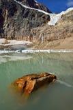 Angel Glacier Mount Edith Cavell Fotografering för Bildbyråer