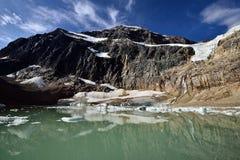 Angel Glacier Mount Edith Cavell Arkivbild