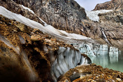 Angel Glacier Mount Edith Cavell Stock Afbeelding