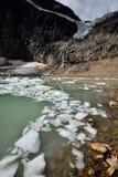 Angel Glacier Mount Edith Cavell Royaltyfri Bild