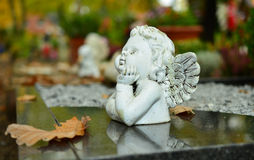 Angel on a grave stone Stock Photography