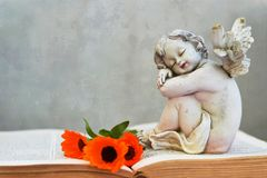 Angel guardian and flowers on the book. Grunge background Royalty Free Stock Photography