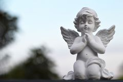 Angel guardian kneeling and praying. Little angel guardian kneeling and praying Royalty Free Stock Photos