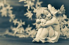 Angel guardian and spring flowers. On wooden background royalty free stock photography