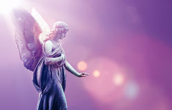 Angel in heaven over purple sky background. Beautiful angel in heaven with divine rays of sun light Royalty Free Stock Image