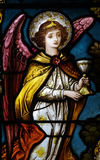 An angel holding a cup Stock Images