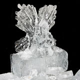 Angel in ice Stock Image