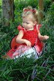 Angel or Ladybug stock photos