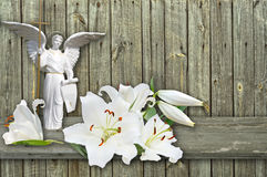 Angel and  lily on wood  background Royalty Free Stock Photography
