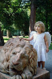 Angel and lion Stock Images