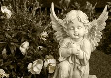 Angel made of clay sitting on a grave surrounded by flowers stock photography