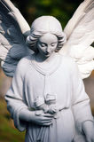 Angel. Memorial sculpture in an old Cemetery Stock Images