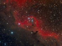 Angel Nebula Foto de archivo libre de regalías